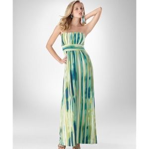 Soma Dresses & Skirts - Soma Green&Blue Sensory Stripe Vanessa Maxi Dress