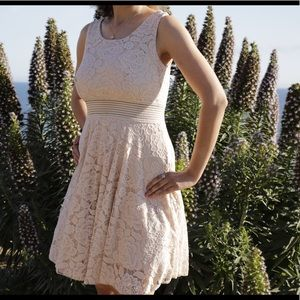 Gorgeous Spring Fashion Lace Dress