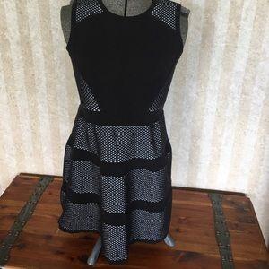 Ann Taylor black and white dress