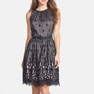 Eliza J Dresses & Skirts - Lace Fit & Flare Dress
