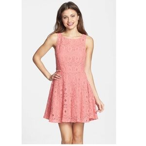 BB Dakota | Pink Lace Fit and Flare Dress
