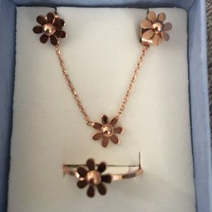 Jewelry - NWOT rose gold over stainless steel set