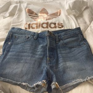 BDG jean shorts.  In new condition!