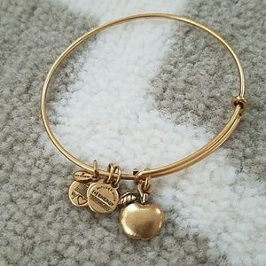 Alex & Ani Jewelry - Alex & Ani bracelet