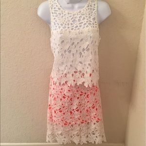 Altar'd State Dresses & Skirts - Pink and white lace skirt!