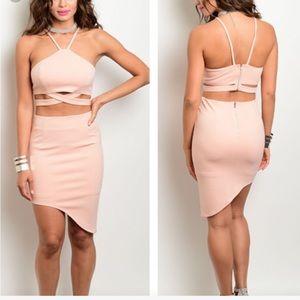 NWT large (last one!!) Blush Skirt Set
