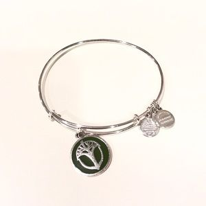Alex & Ani Jewelry - Alex and Ani Unexpected Miracles Enamel Bracelet