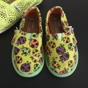 TOMS Other - TOMS Toddler Shoes T6
