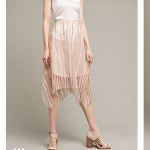 Eva Franco Dresses & Skirts - Nwt Anthropologie Eva Franco Lace Overlay Skirt 6