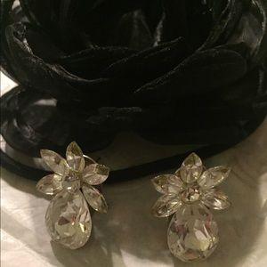 Earrings - crystal