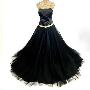 Night Moves Dresses & Skirts - Drop waist tulle skirt black ballgown