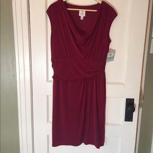 Dresses & Skirts - 🎉HP🎉Crimson dress with flattering ruching