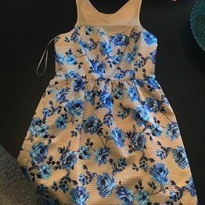 CeCe beige dress with blue flowers.