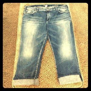 Silver Jeans Denim - Plus Sized 24 Silver Jeans Suki Capri