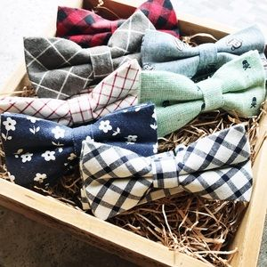 Cultiverre Other - 🆕 dapper gent : trendsetter bow ties