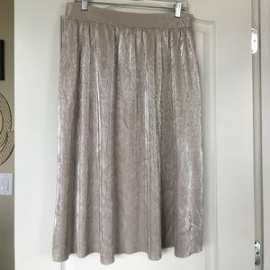 Gorgeous Beige and Silver Midi Skirt