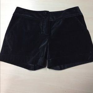 The Limited Pants - The Limited Drew Fit Velvet Black Cuffed Shorts 4