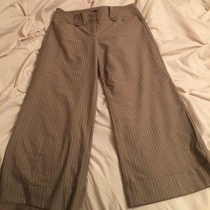 Express Pants - Express Editor Dress Cropped Pant