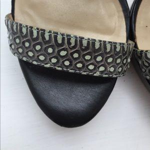 Charles David Shoes - Charles David sexy Black pump with buckles