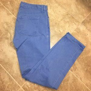 Ann Taylor LOFT Modern Straight Light Blue Jeans