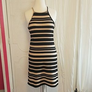 Black & Beige Body Con Absolute Angel Dress