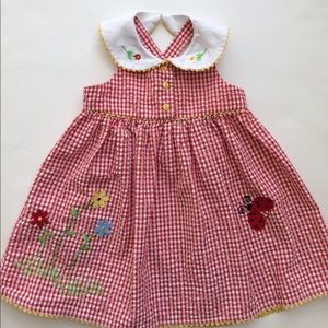 Youngland Other - 🐞Youngland Red Seersucker Dress Size 24M🐞