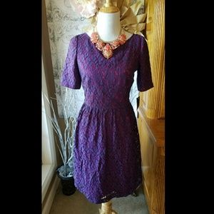 Adrianna Papell Dresses & Skirts - Striking! Hot pink! Purple lace! l NWT