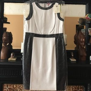 Vince Camuto Faux Leather Sheath Dress Size:14