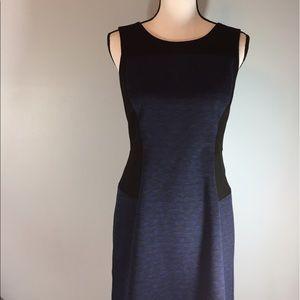 Anne Taylor Petite dress size 8P