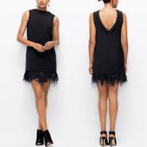 Ann Taylor Dresses - LBD with Feather hem