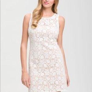 JS Collections Dresses & Skirts - JS Collections Lace Shift Dress Size 8 Petite
