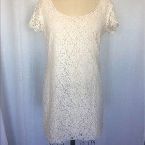 Talula Lace Silk Mini Dress (Aritzia)