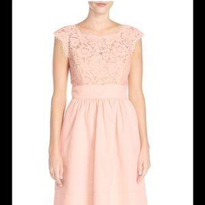 Eliza J lace and faille dress 👗