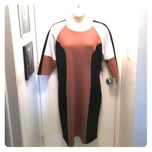 Eloquii Dresses & Skirts - 🆕Eloquii Dress