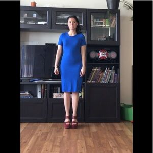 Aritzia Bodycon Dress