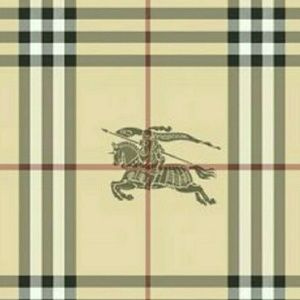 Burberry Other - BURBERRY THE BEAT