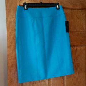 Worthington Fresh Blue lined skirt. Sz 6. NWT