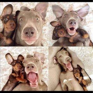 Me & You!!   HAPPY POSH Partners!  