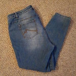 Max & Co. Denim - Max Skimmer Jeans size 16W