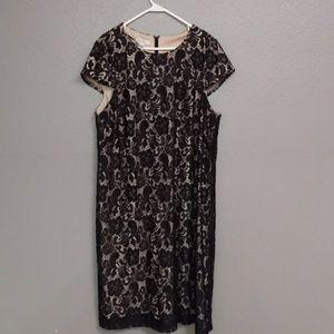 Ivy & Blue Dresses & Skirts - Ivy & Blue Black Lace Dress 20W