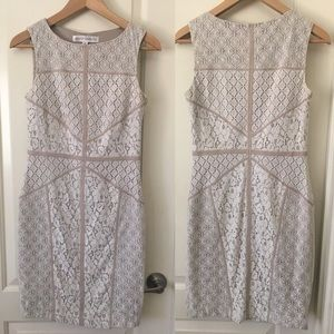 Maggy London Beige & White Lace Dress
