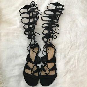 SCHUTZ Shoes - Schutz Tall Gladiators
