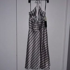 Alyn Paige Dresses & Skirts - NWT Alyn Paige/Maurices silky black & white dress