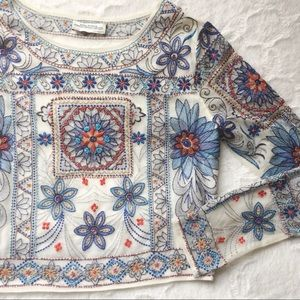 Zara Tops - {zara} embroidered mesh crop with intricate detail