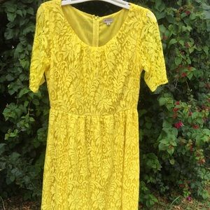 Daniel Cremieux Dresses & Skirts - DANIEL CREMIEUX Yellow Lace Dress