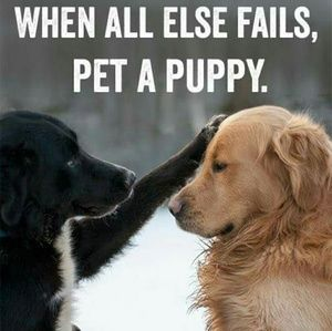 An infectious smile! Then go shopping in my closet