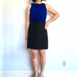 Richard Chai for Target Color Block Dress