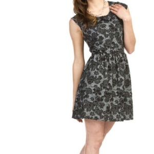 Dresses & Skirts - NWT Papillon Pop of Flowers Floral Embossed Skater