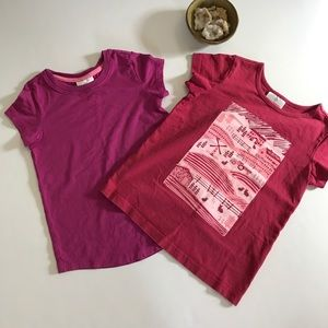 Hanna Andersson Other - Lot of 2 🌸 Hanna Andersson girls t shirts sz 110