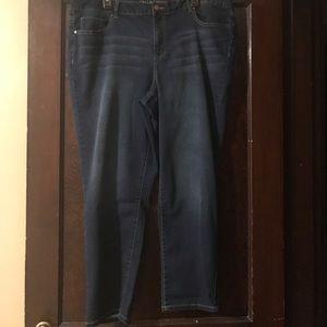Denim - NWOT size 18W Falls Creek skinny jeans